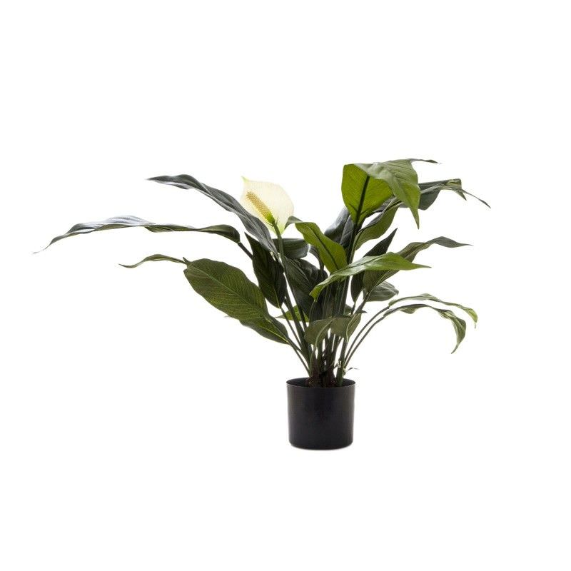 Artificial Spathiphyllum Lily, White Flower, 53cm
