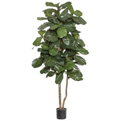 Potted Artificial Grand Fiddle Leaf Fig Tree, 210cm