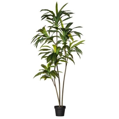 Potted Artificial Dracaena Fragrans Tree, 160cm