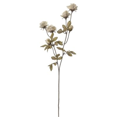 Artificial Dried Rose Spray, Set of 6, Ivory