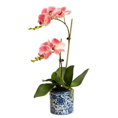Dynasty Artificial Phalaenopsis Orchid in Pot, 30x55cm, Pink Flower