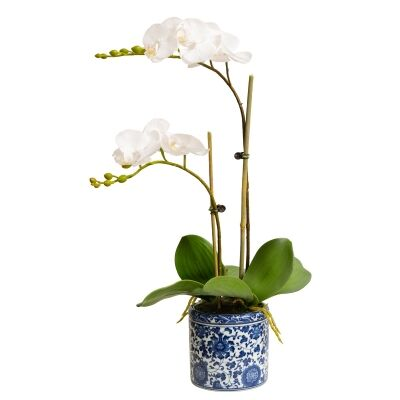 Dynasty Artificial Phalaenopsis Orchid in Pot, 30x55cm, White Flower