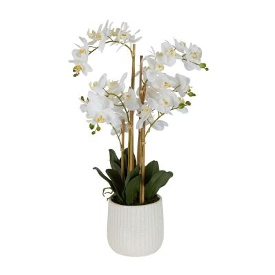 Real Touch Artificial Orchid in Ceramic Pot, 70cm