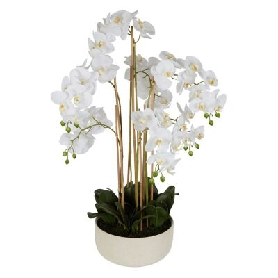 Real Touch Artificial Orchid in Ceramic Bowl, 100cm