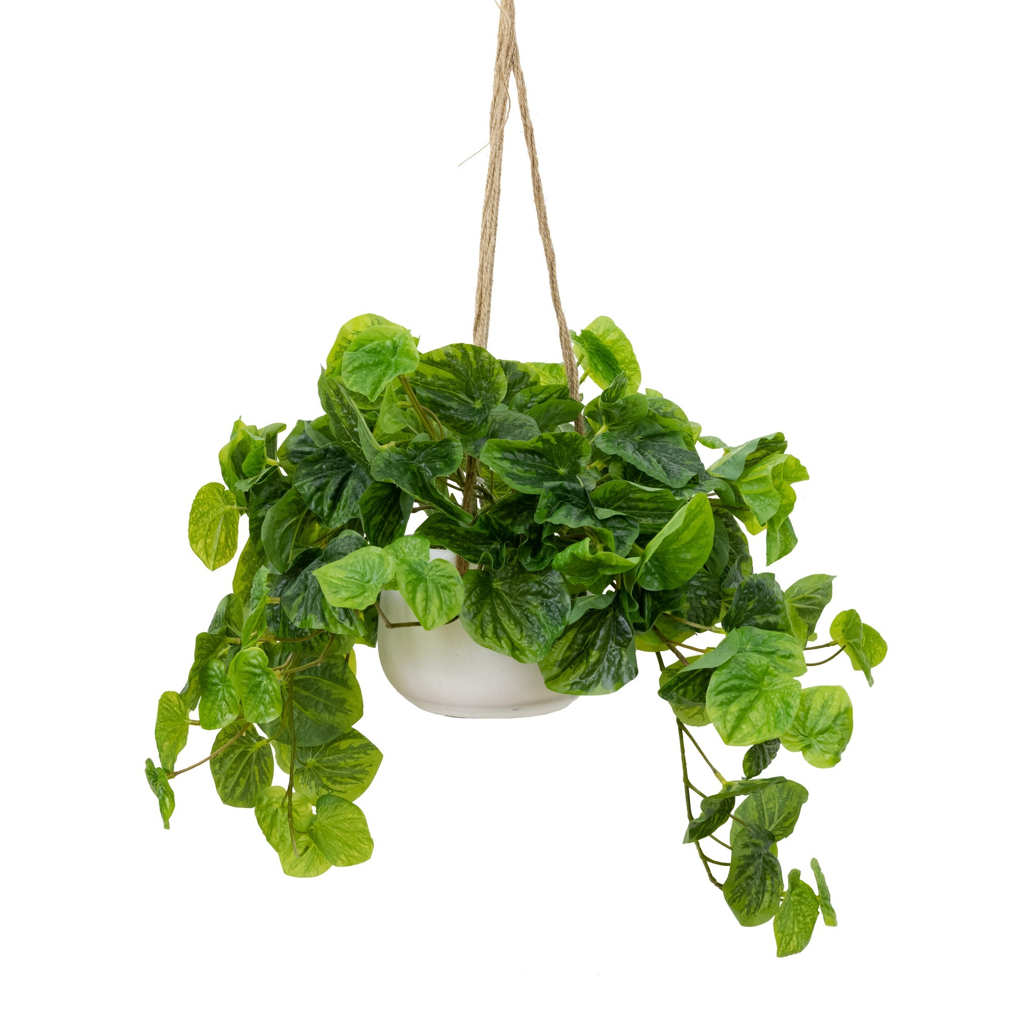 Glamorous Fusion Artificial Peperomia Caperata in Hanging Pot, 72cm, Green